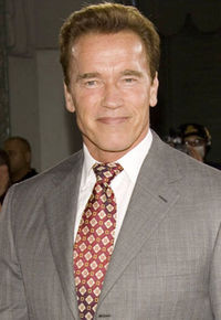 Schwarzenegger's 'The Last Stand' Plot Synopsis — Turns Out It's NOT a Western