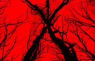 Movie Review: 'Blair Witch'